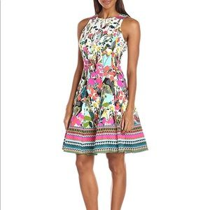 Brand new Maggy London dress!!! Sold out!